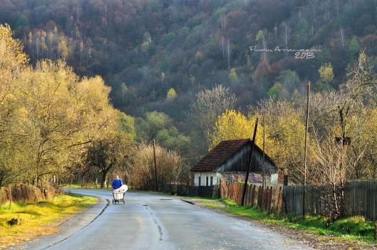 Rusca Montana_Roumanie