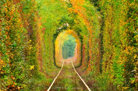 Tunnel of Love - Romania2